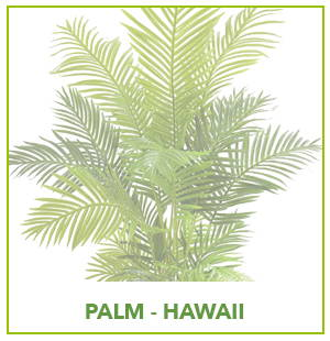 ARTIFICIAL HAWAII PALM PLANTS