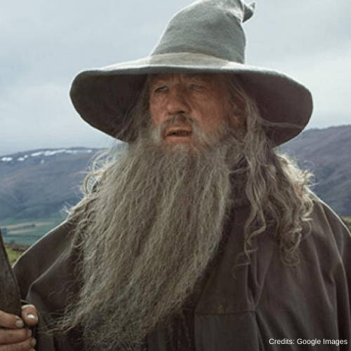 Gandalf's Lord of the Rings