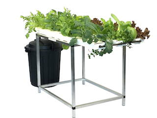 Starter Salad Table