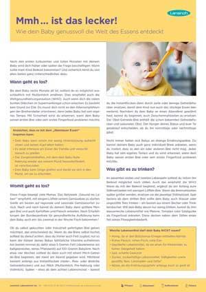 Infoblatt zur Beikosteinführung