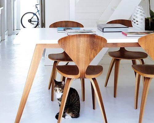 Modern Dining Chairs   2Modern