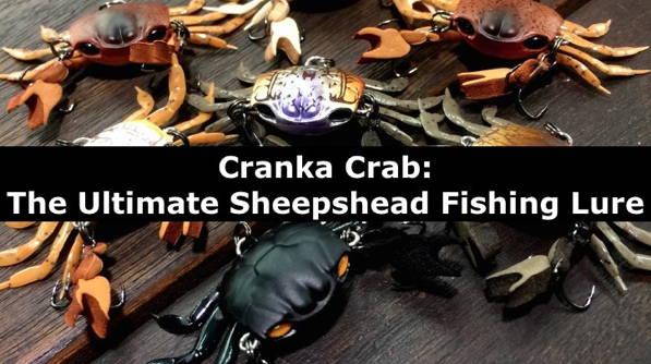 Cranka Crab: Ultimate Sheepshead Lure