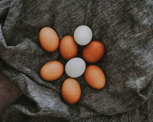 eight eggs on top of grey fabrics