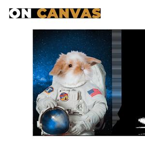 astronaut rabbit art