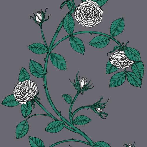 Merenda Wallpaper Elva Rose Wallpaper