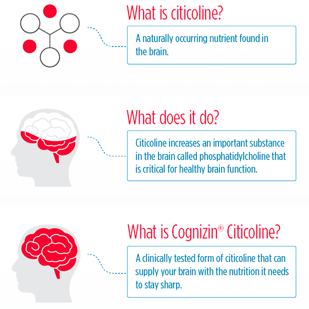 Cognizin Citicoline Infographic