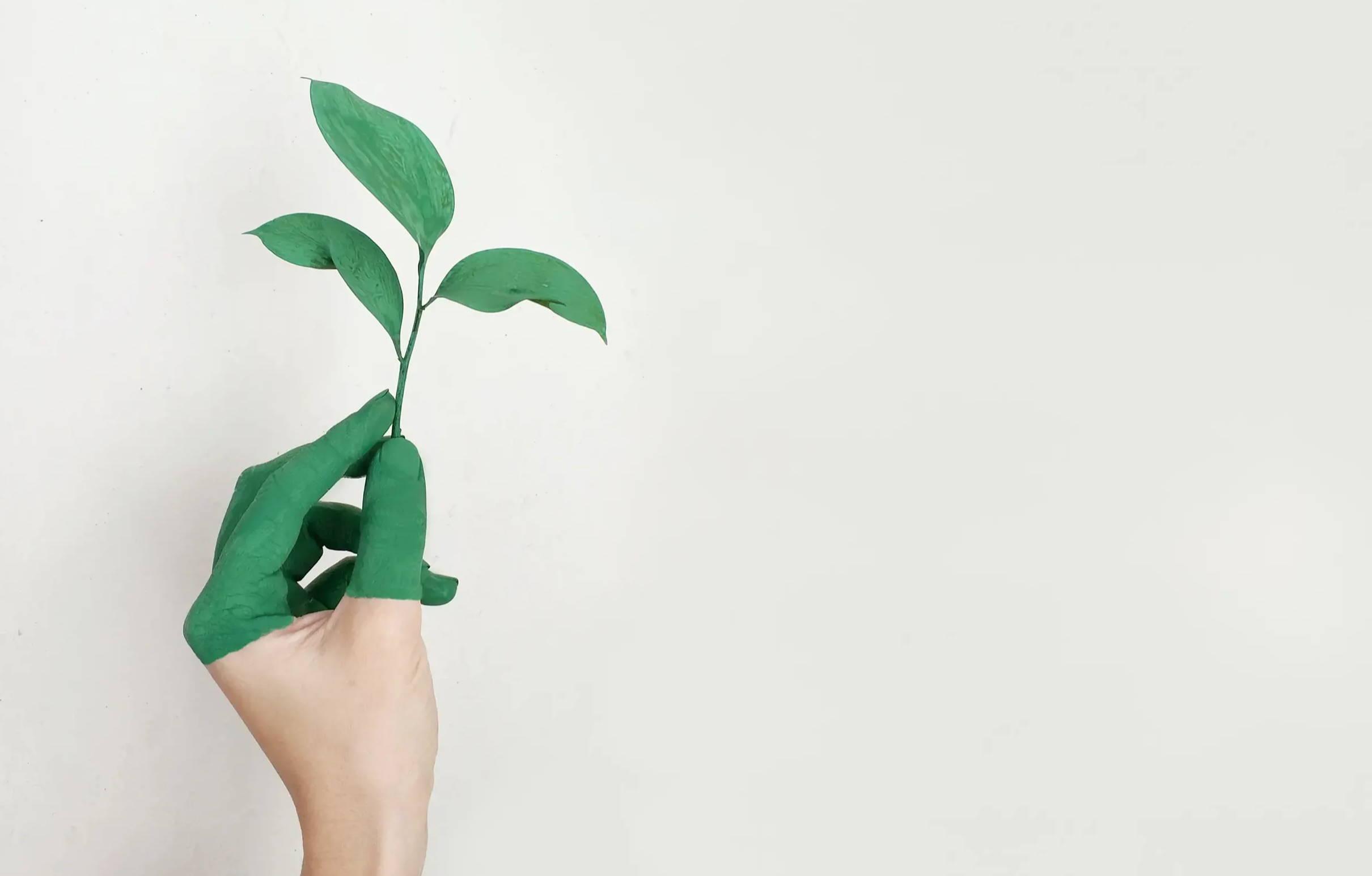 MYLILY Blog Nachhaltiges Leben