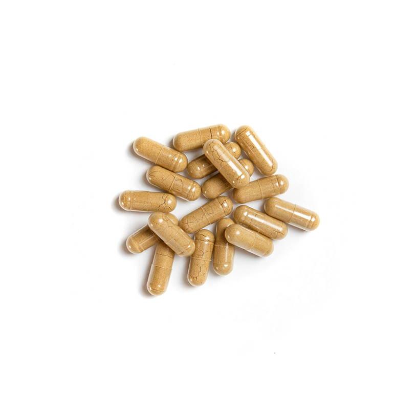 Nature Restore BIGImmune Supplement
