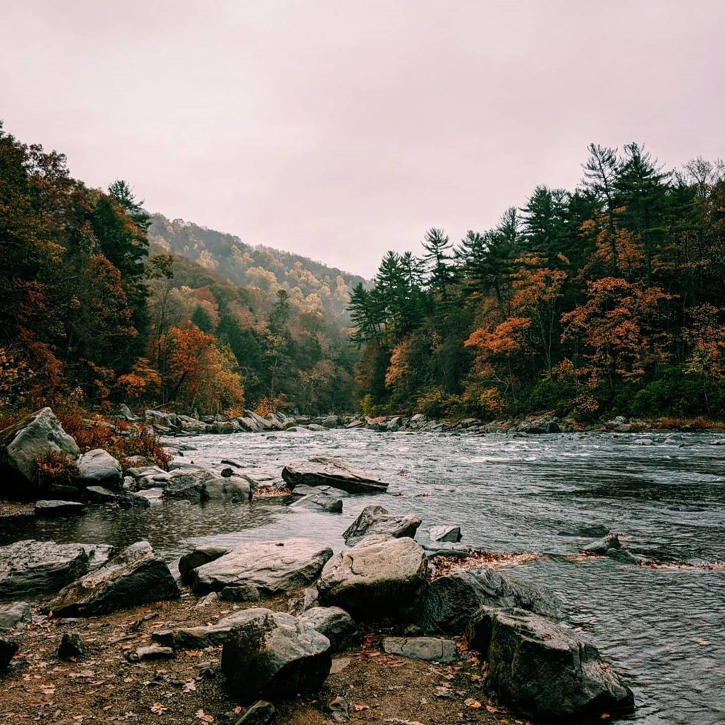 The Youghiogheny River in Ohioplye State Park in Autumn