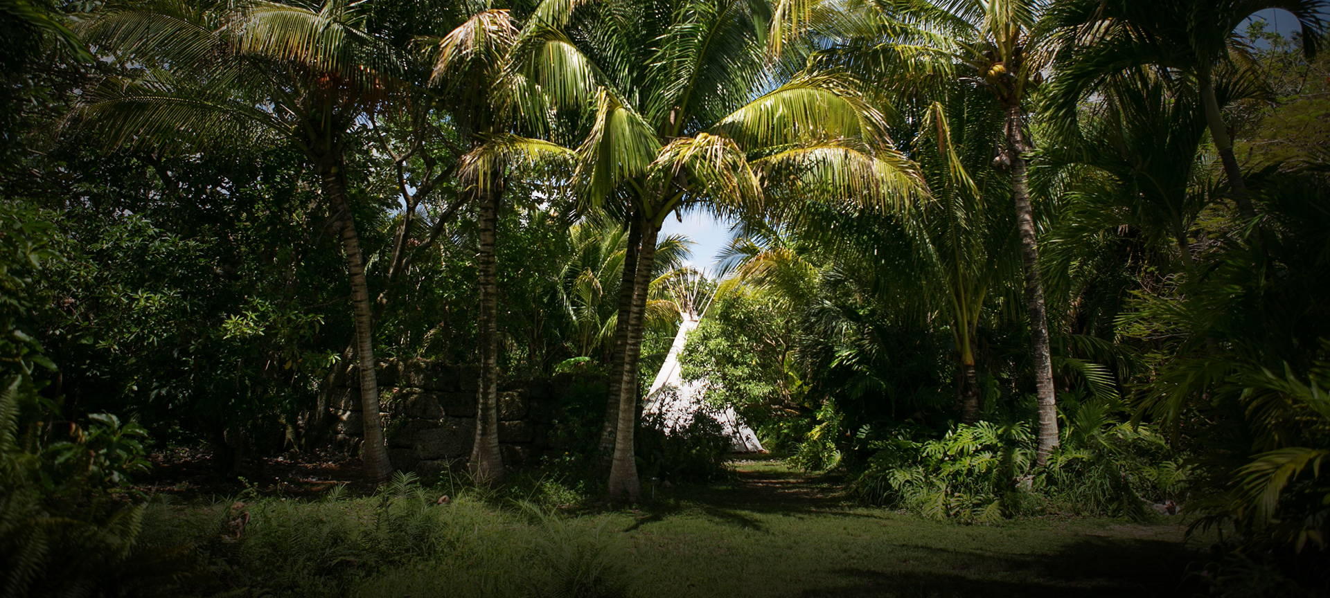 Paradise Farms Sacred Space Miami