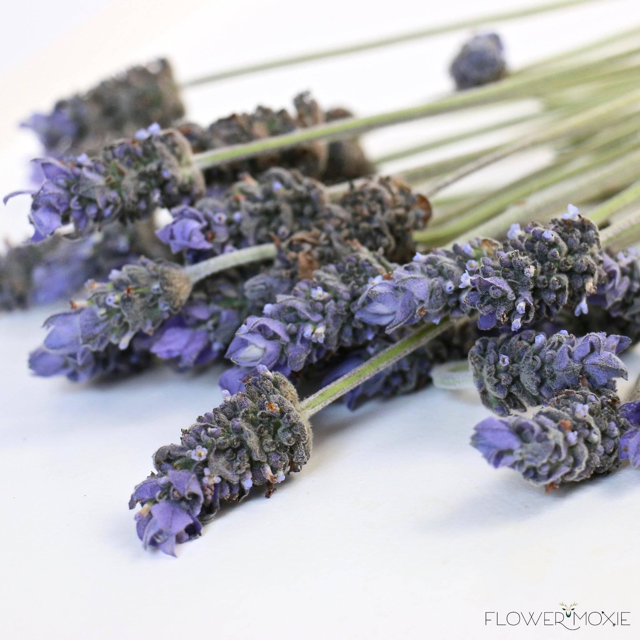 fresh lavender wedding flower