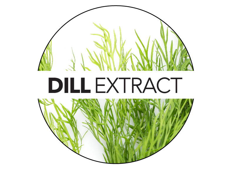 Dill extract adds essential minerals to visibly firm skin and provide hydration.