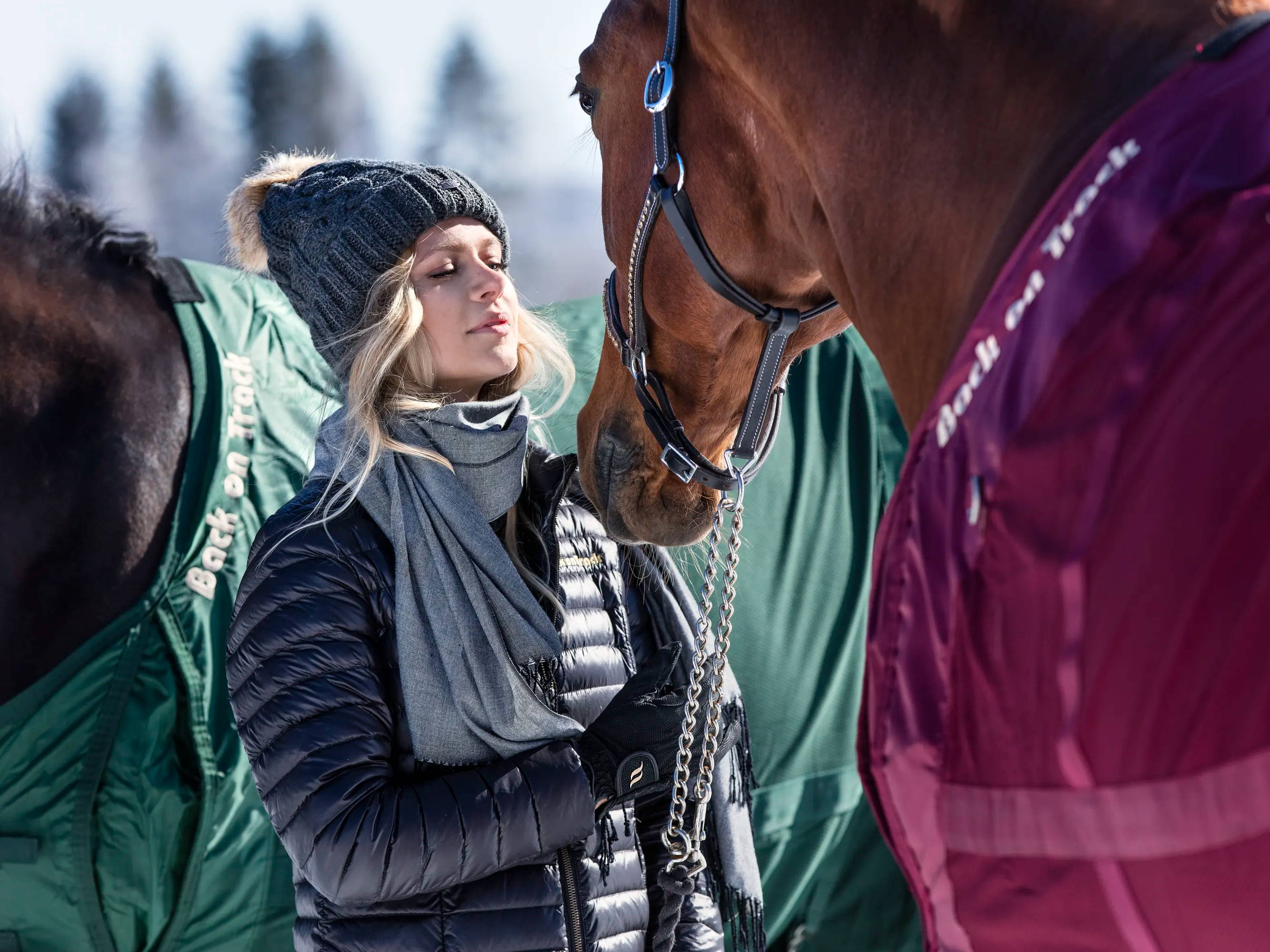 Guide: Så håller du hästen varm i vinter