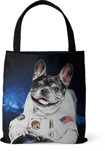 french bulldog astronauts art