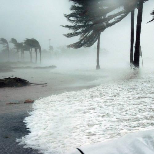 Erratic Storms