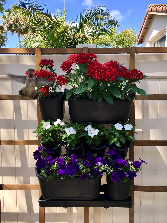 Vertical Garden Kit Wall Hanging Flowers Gardening plants herbs pots planters x5