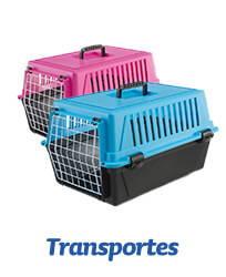 Transporte para caes
