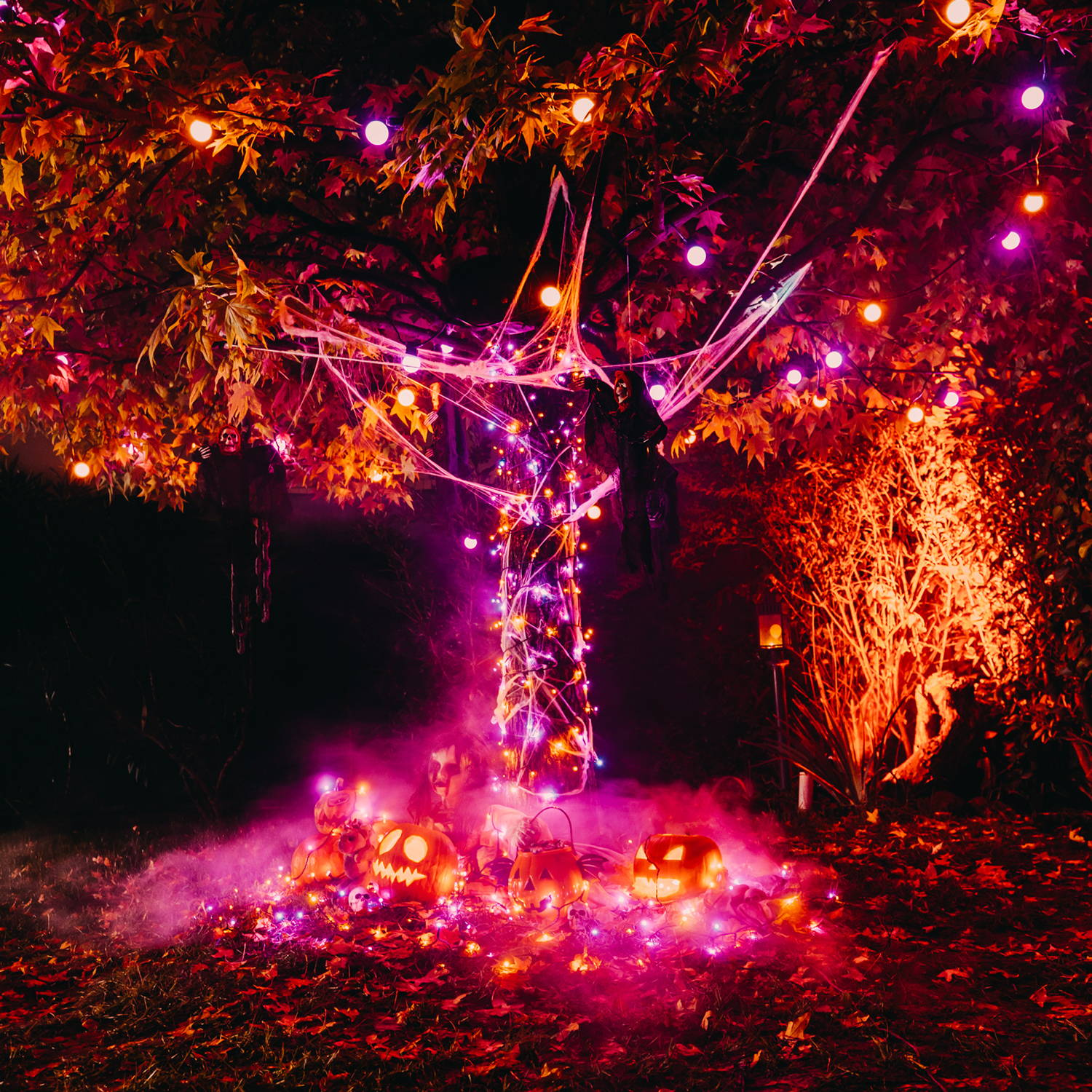 Halloween themed Twinkly lighting tree display with pumpkins and orange and purple lights