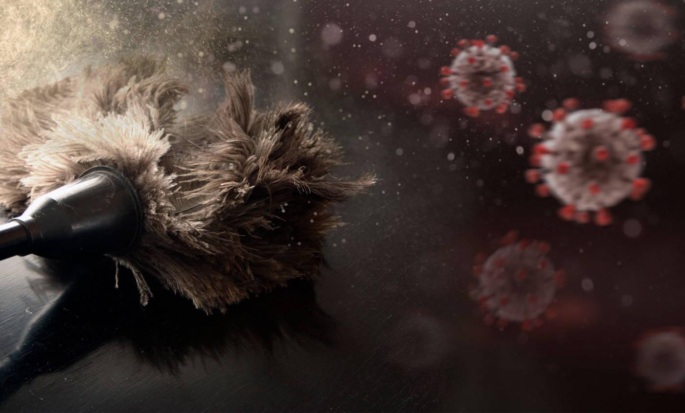 dusting coronavirus