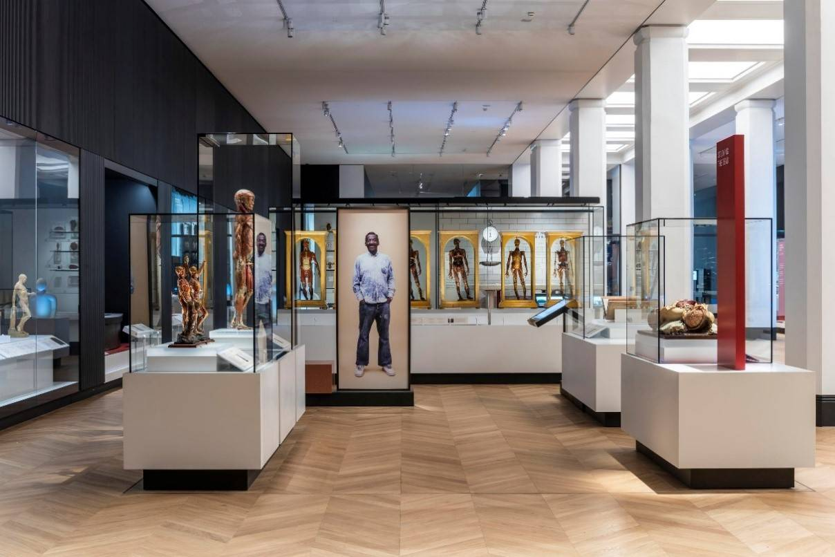 The Medicine and Bodies gallery in Medicine: The Wellcome Galleries © Science Museum Group