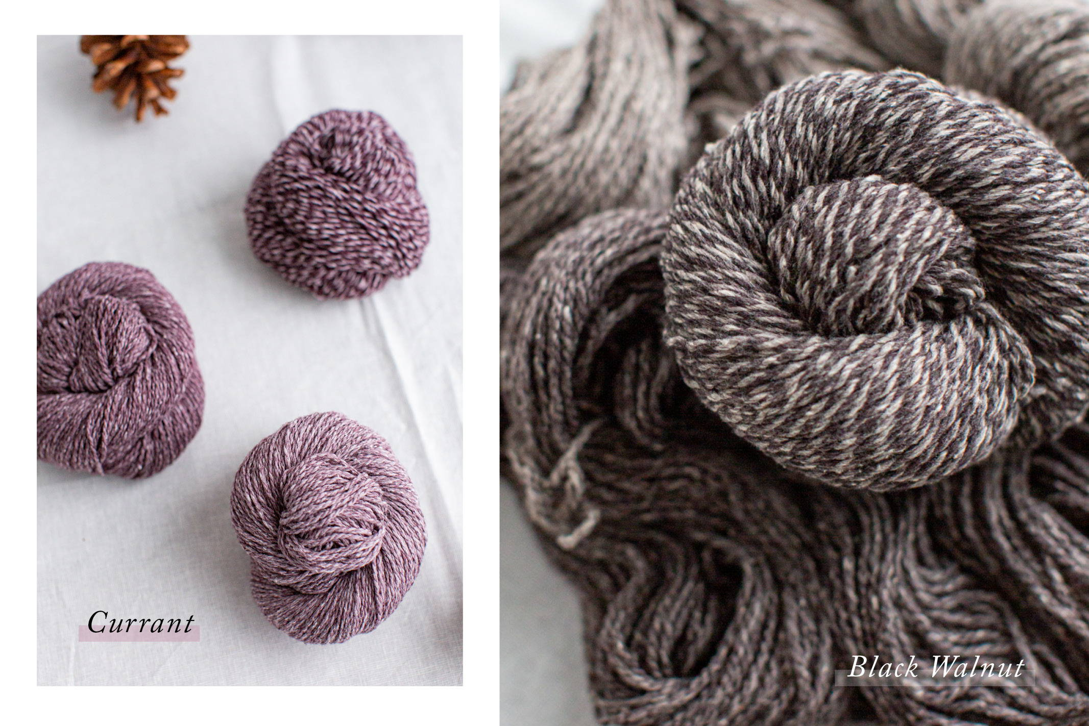 Dapple | Currant & Black Walnut