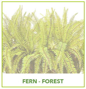 ARTIFICIAL FOREST FERN PLANTS