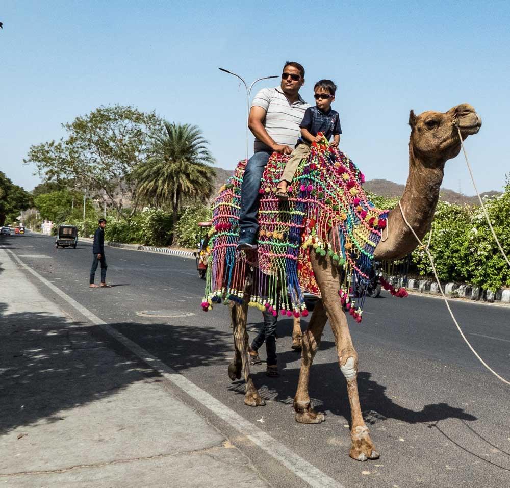 Travelbay India Tours - Customer Reviews - Simon & Gina in India - Jaipur street scene