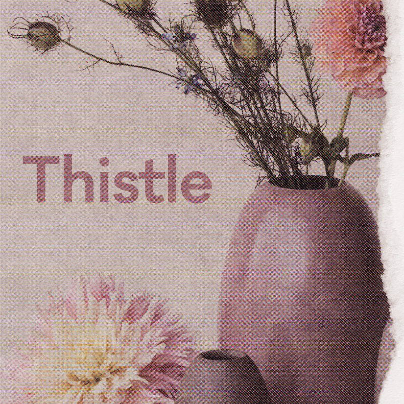 Thistle Spotify Playlist