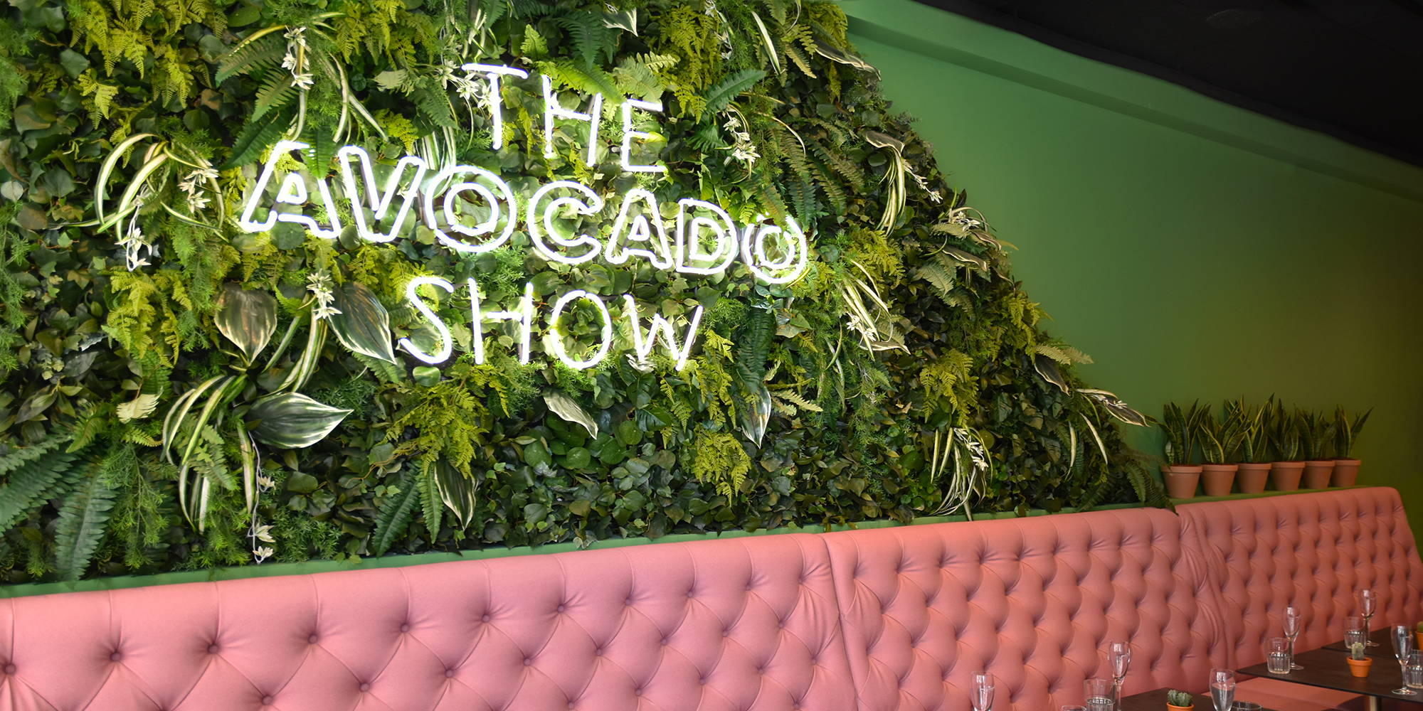 Welcome to The Avocado Show